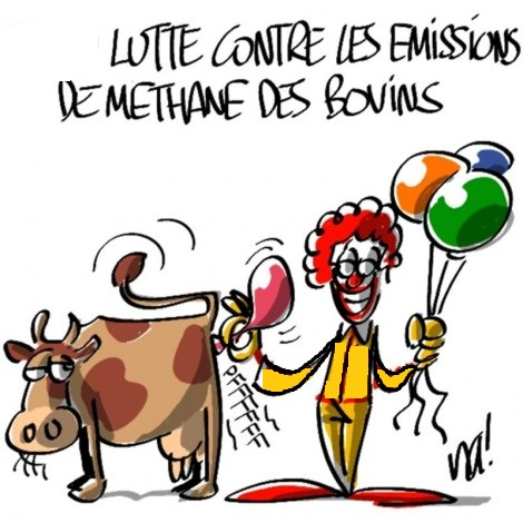 Emissions méthane bovins