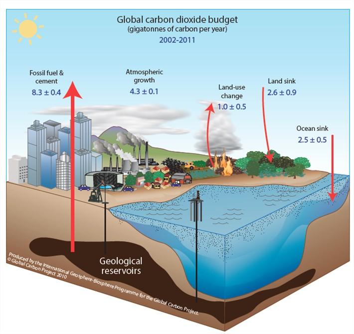 Bilan carbone global