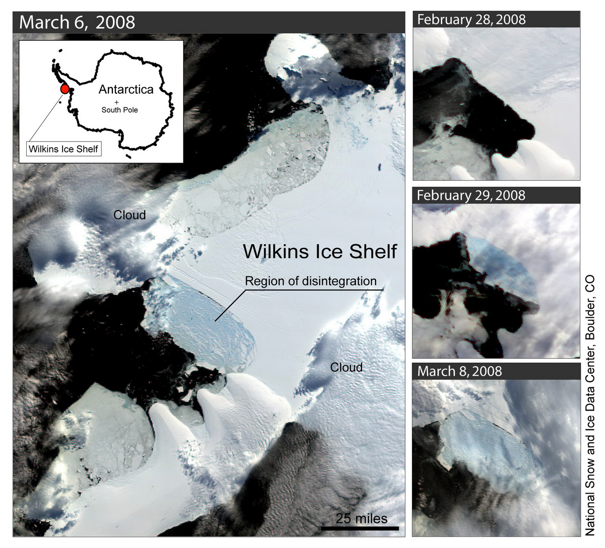 Ice Shelf plateforme Wilkins