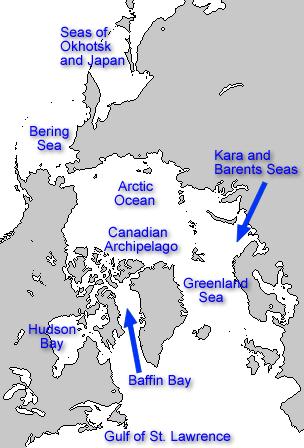 Mers du cercle polaire
