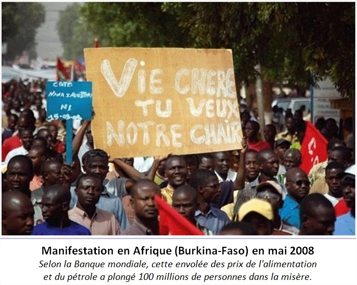 Émeutes de la faim de 2008