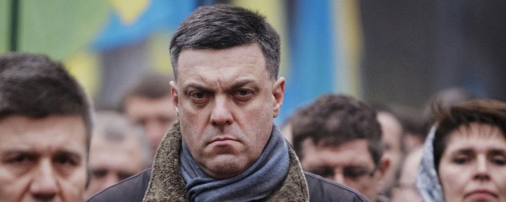 Entre 2002 et 2006, Tyahnybok soumit 36 propositions de lois, pratiquement toutes rejetées